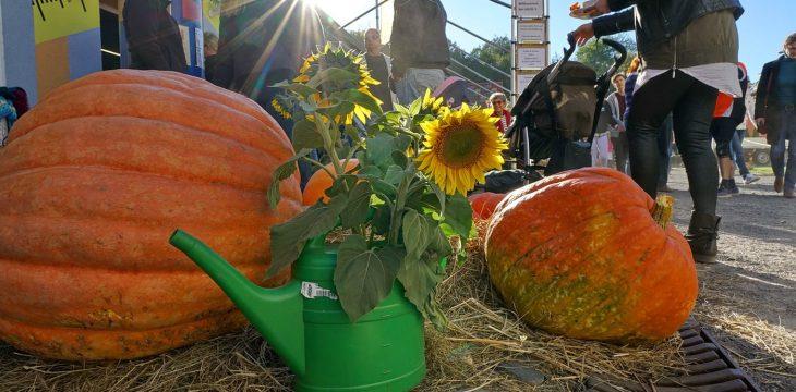 Wir feiern wieder :-) 6. LAUSL – Erntefest am kommenden Sonntag, 29.09.2019 ab 14 Uhr